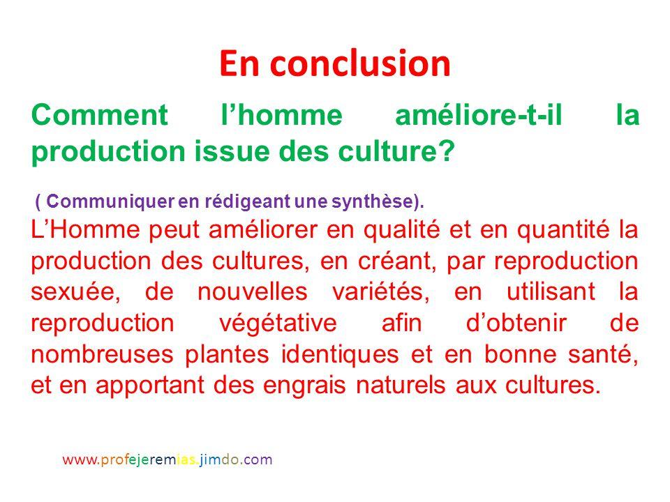 En conclusion Comment l'homme améliore-t-il la production issue des culture ( Communiquer en rédigeant une synthèse).