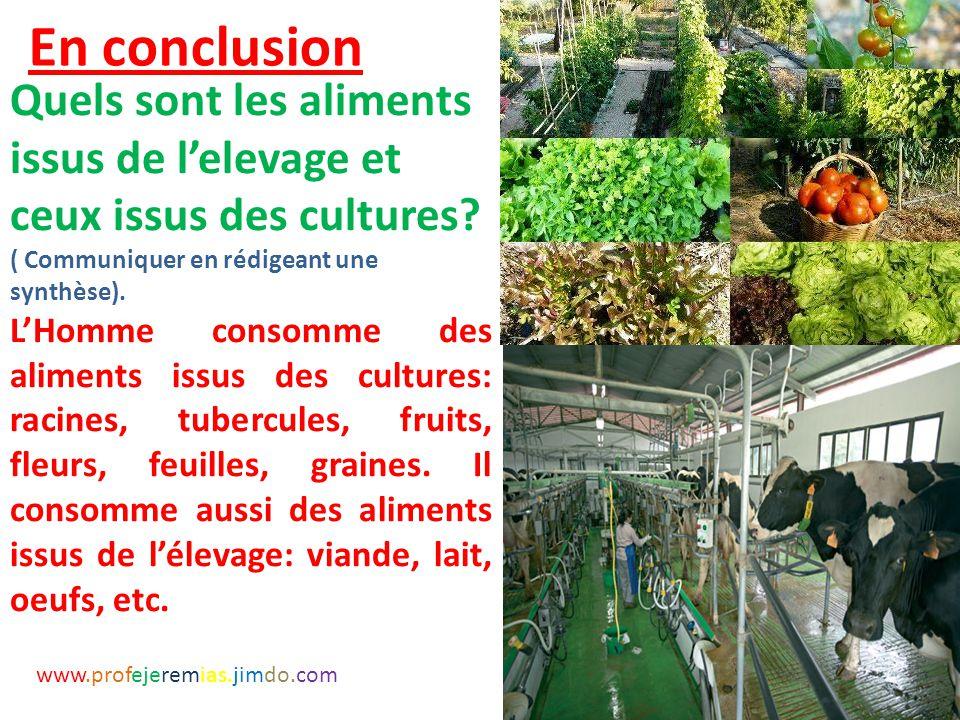 En conclusion Quels sont les aliments issus de l'elevage et ceux issus des cultures ( Communiquer en rédigeant une synthèse).
