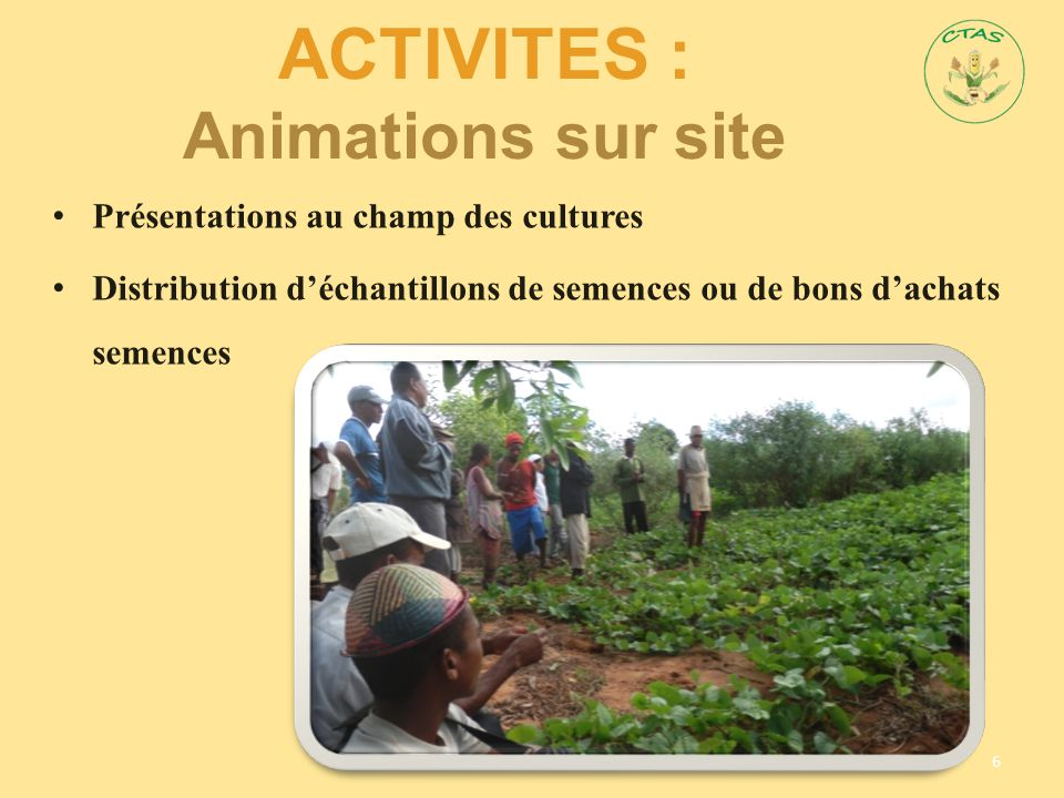 AcTIVITES : Animations sur site