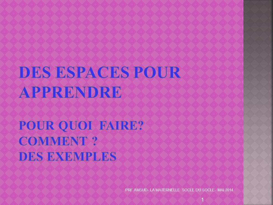 Des espaces pour apprendre Pour quoi faire Comment Des exemples