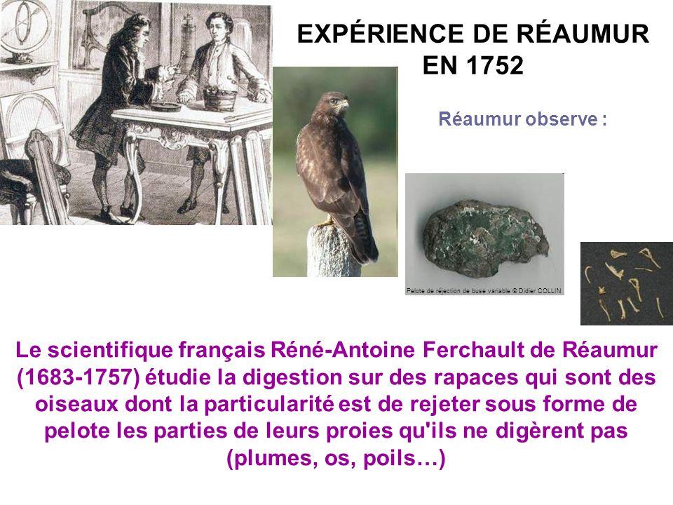 EXPÉRIENCE DE RÉAUMUR EN 1752