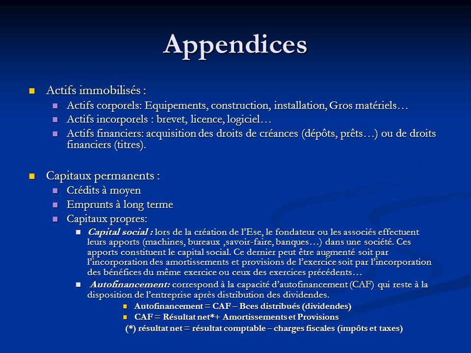 Appendices Actifs immobilisés : Capitaux permanents :