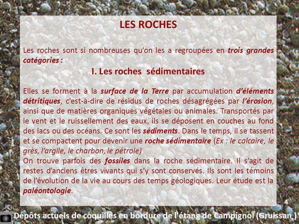 I. Les roches sédimentaires