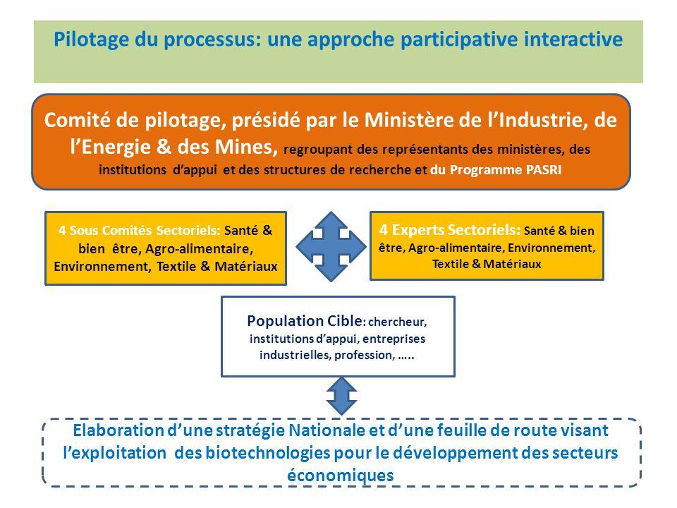 Pilotage du processus: une approche participative interactive