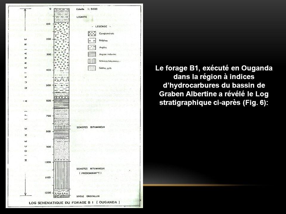 Le forage B1, exécuté en Ouganda dans la région à indices d'hydrocarbures du bassin de Graben Albertine a révélé le Log stratigraphique ci-après (Fig.