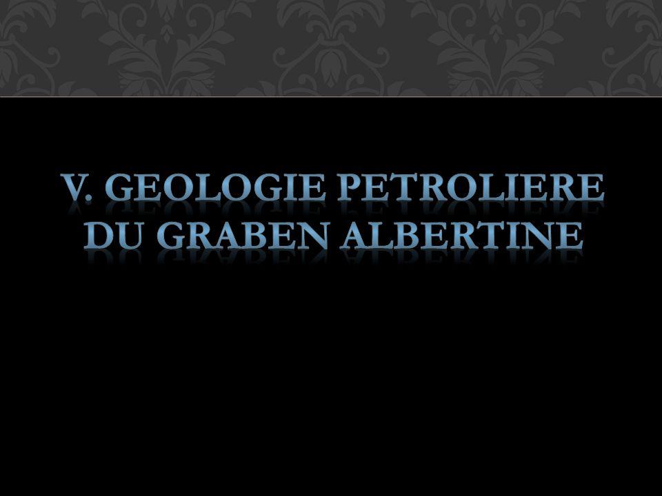 V. GEOLOGIE PETROLIERE DU GRABEN ALBERTINE