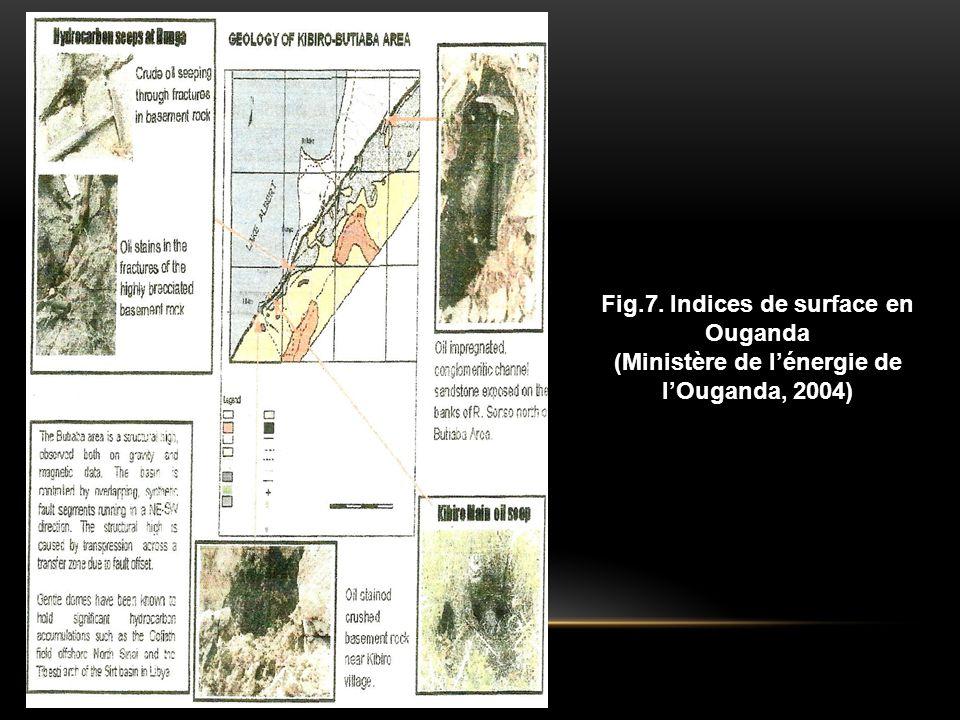 Fig.7. Indices de surface en Ouganda (Ministère de l'énergie de l'Ouganda, 2004)