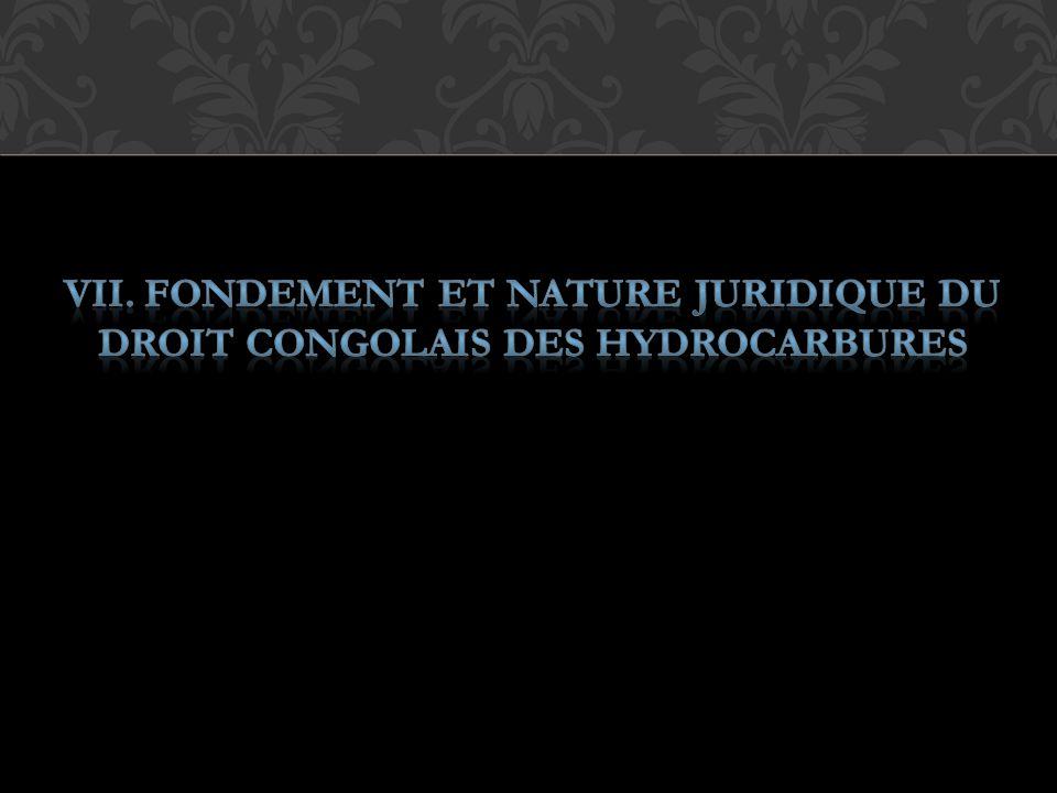VII. FONDEMENT ET NATURE JURIDIQUE DU DROIT CONGOLAIS DES HYDROCARBURES