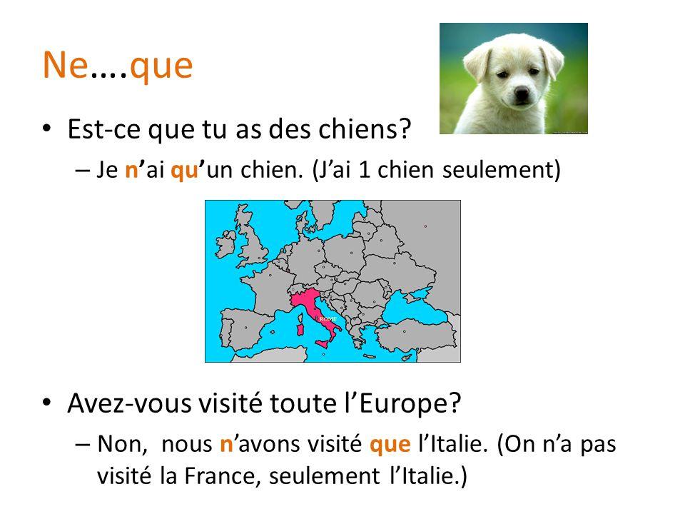 Ne….que Est-ce que tu as des chiens Avez-vous visité toute l'Europe