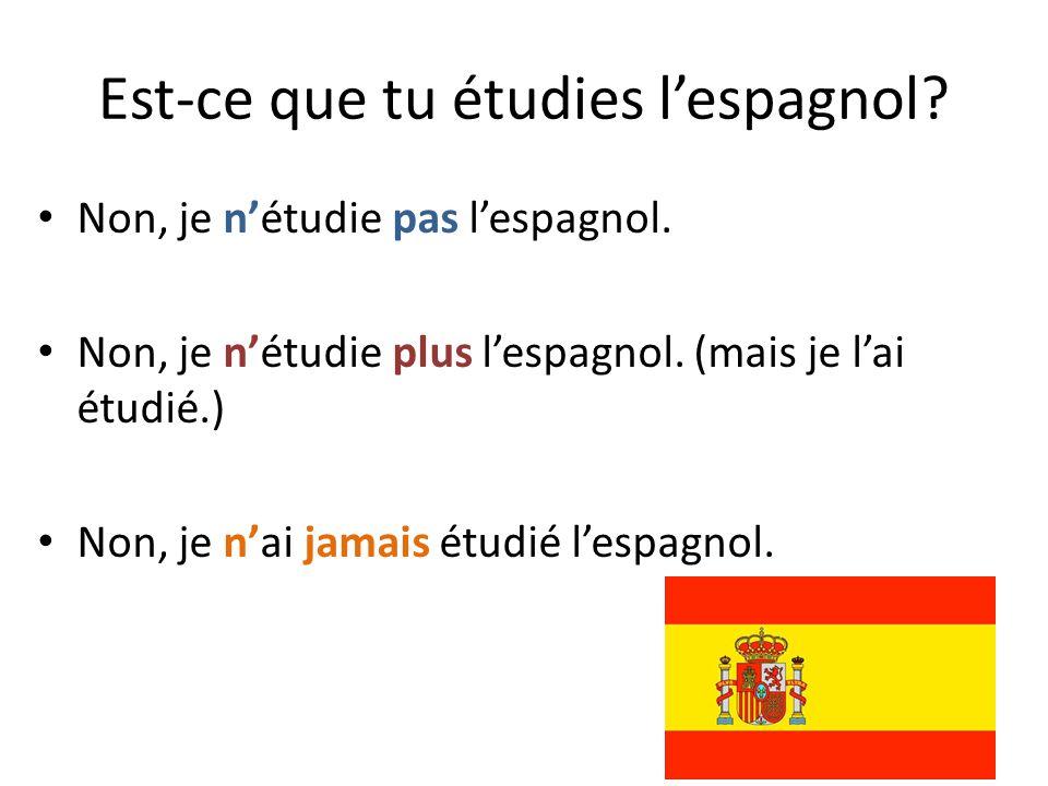 Est-ce que tu étudies l'espagnol