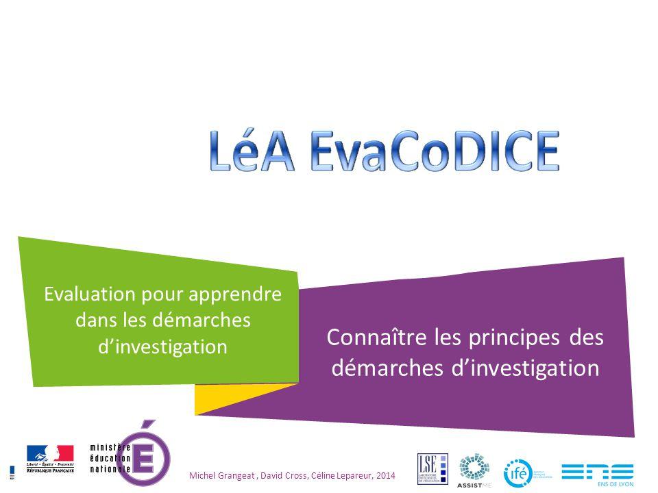 Evaluation pour apprendre dans les démarches d'investigation