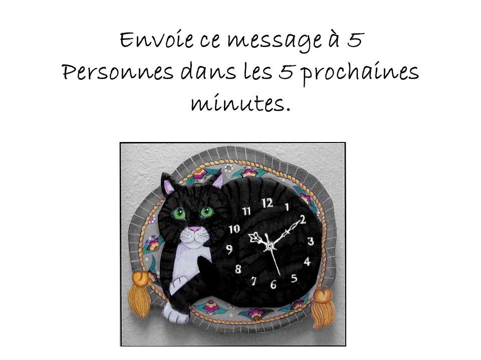 Envoie ce message à 5 Personnes dans les 5 prochaines minutes.