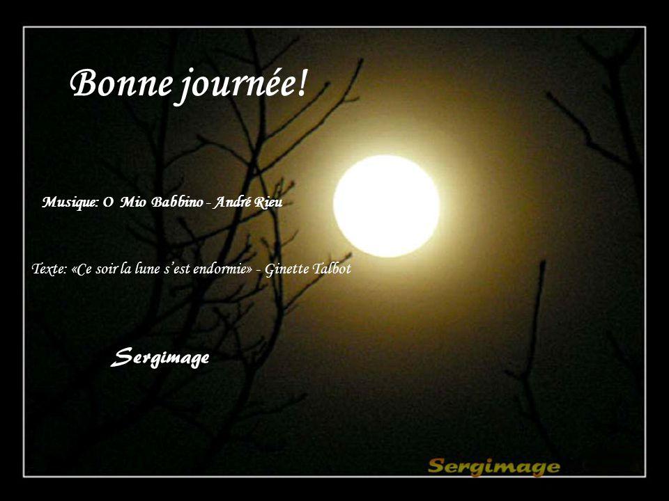 Bonne journée! Sergimage Musique: O Mio Babbino - André Rieu