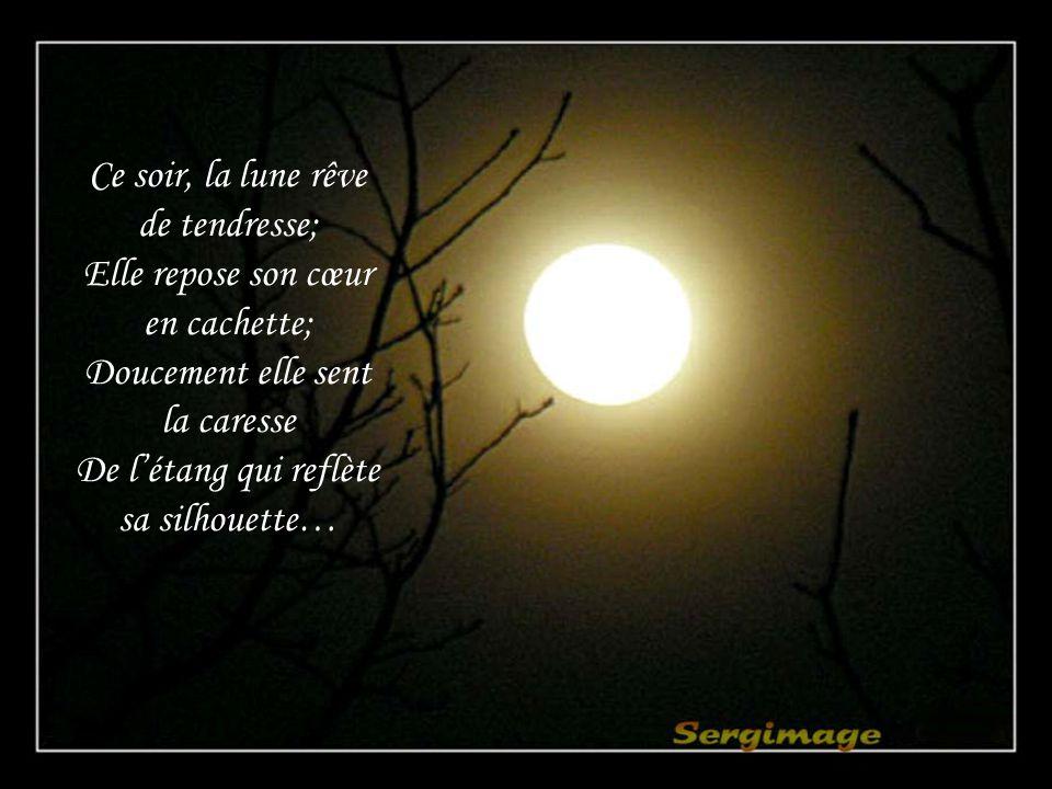 Ce soir, la lune rêve de tendresse; Elle repose son cœur en cachette;