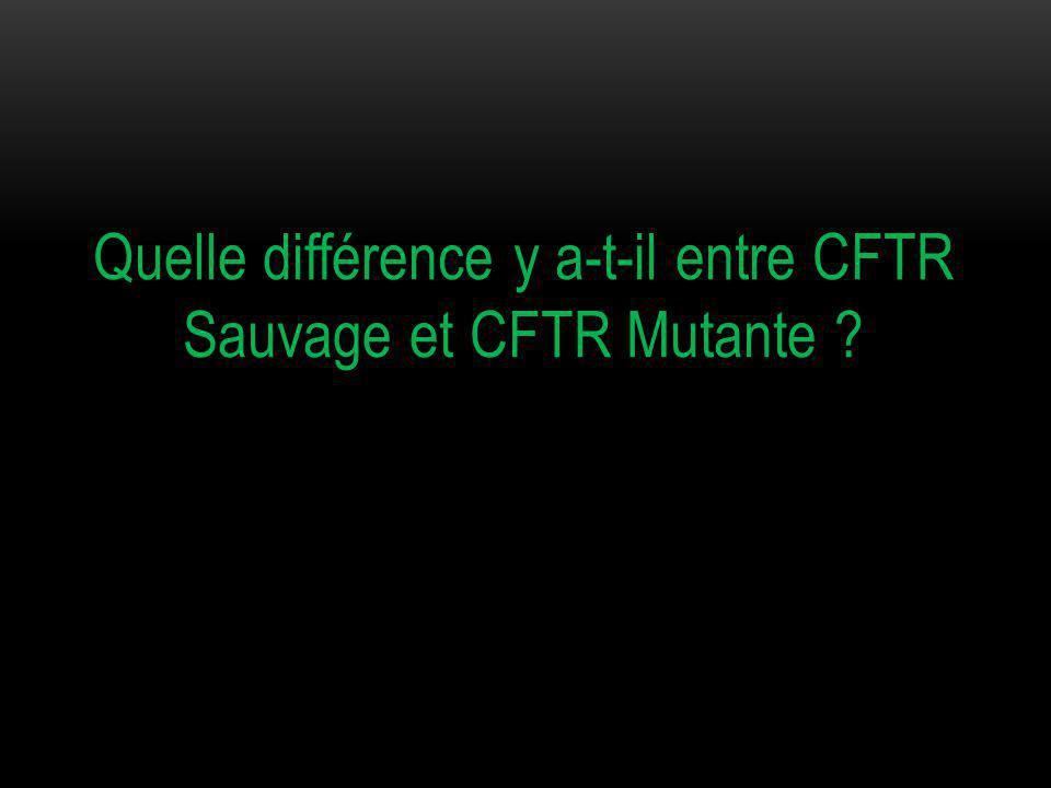 Quelle différence y a-t-il entre CFTR Sauvage et CFTR Mutante