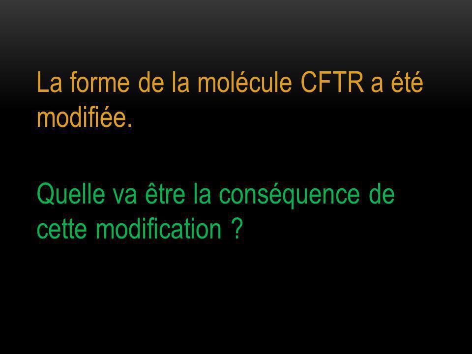 La forme de la molécule CFTR a été modifiée.
