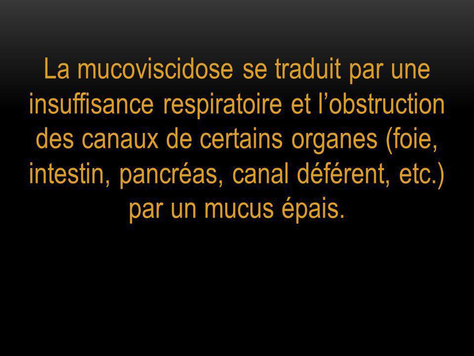 La mucoviscidose se traduit par une insuffisance respiratoire et l'obstruction des canaux de certains organes (foie, intestin, pancréas, canal déférent, etc.) par un mucus épais.