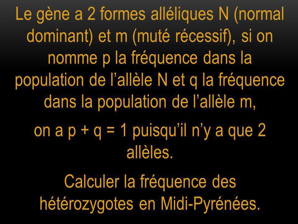 on a p + q = 1 puisqu'il n'y a que 2 allèles.