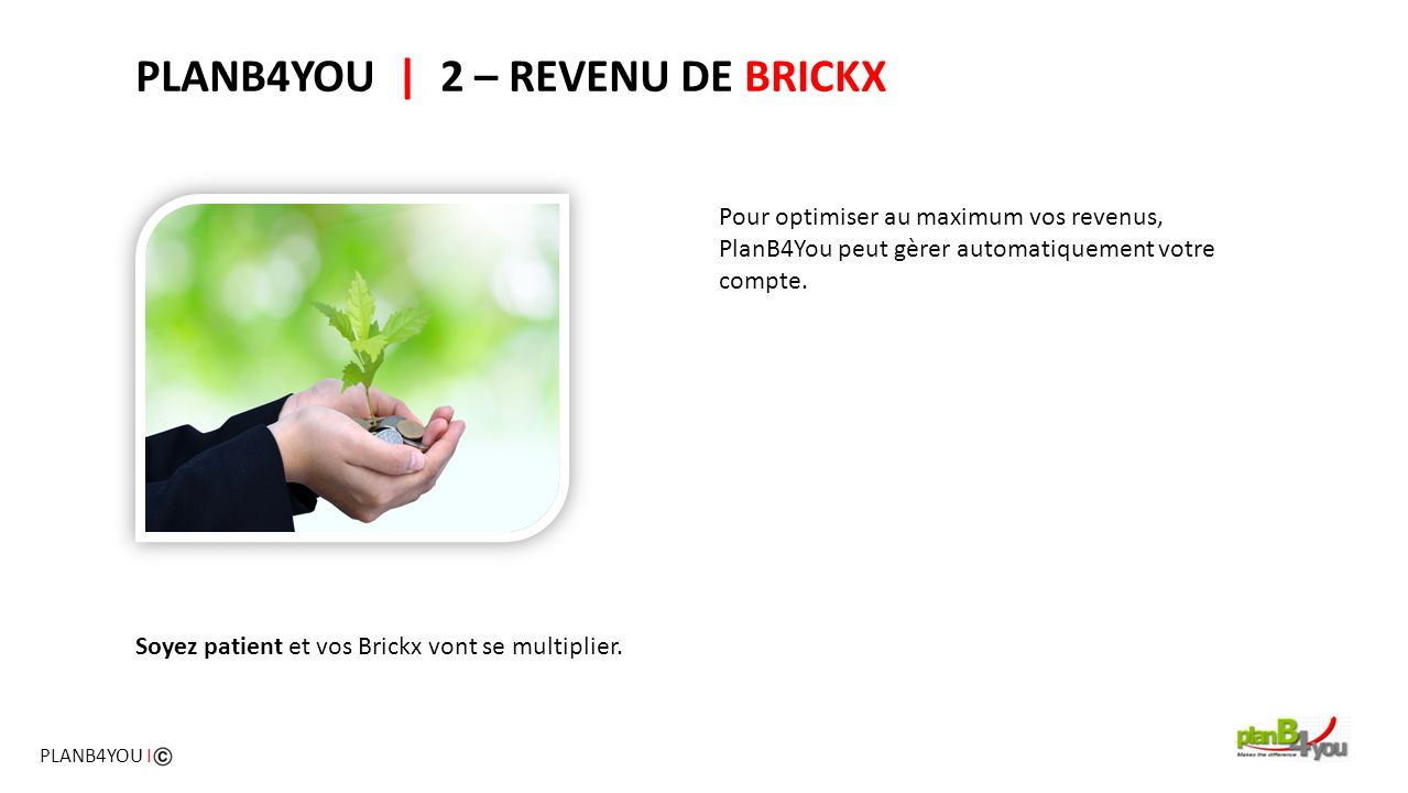 PLANB4YOU | 2 – REVENU DE BRICKX