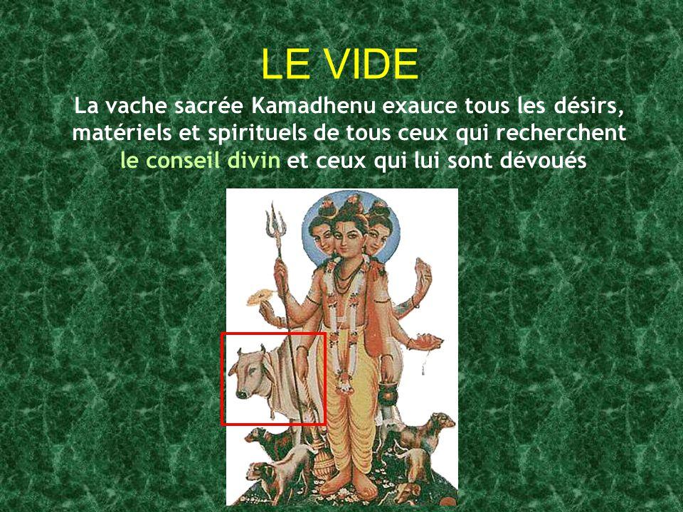 LE VIDE La vache sacrée Kamadhenu exauce tous les désirs,