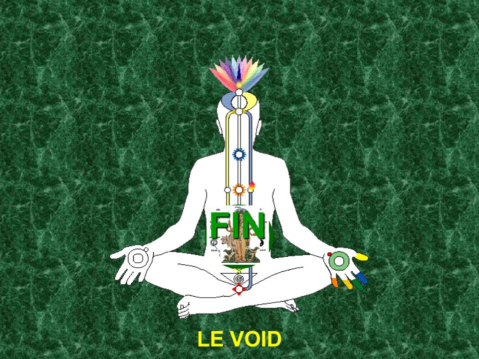 FIN LE VOID
