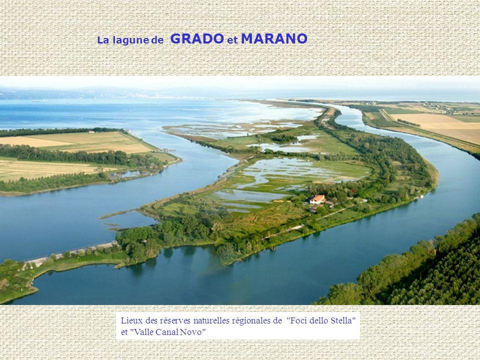 La lagune de GRADO et MARANO