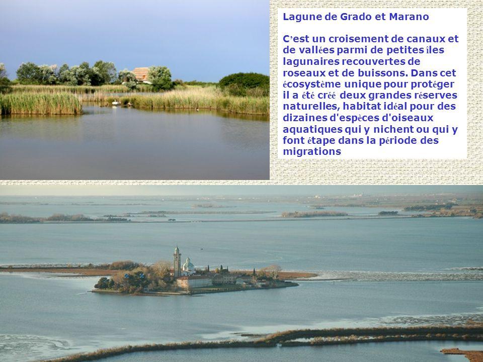 Lagune de Grado et Marano