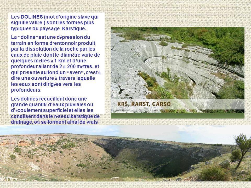 Les DOLINES (mot d origine slave qui signifie vallée ) sont les formes plus typiques du paysage Karstique.