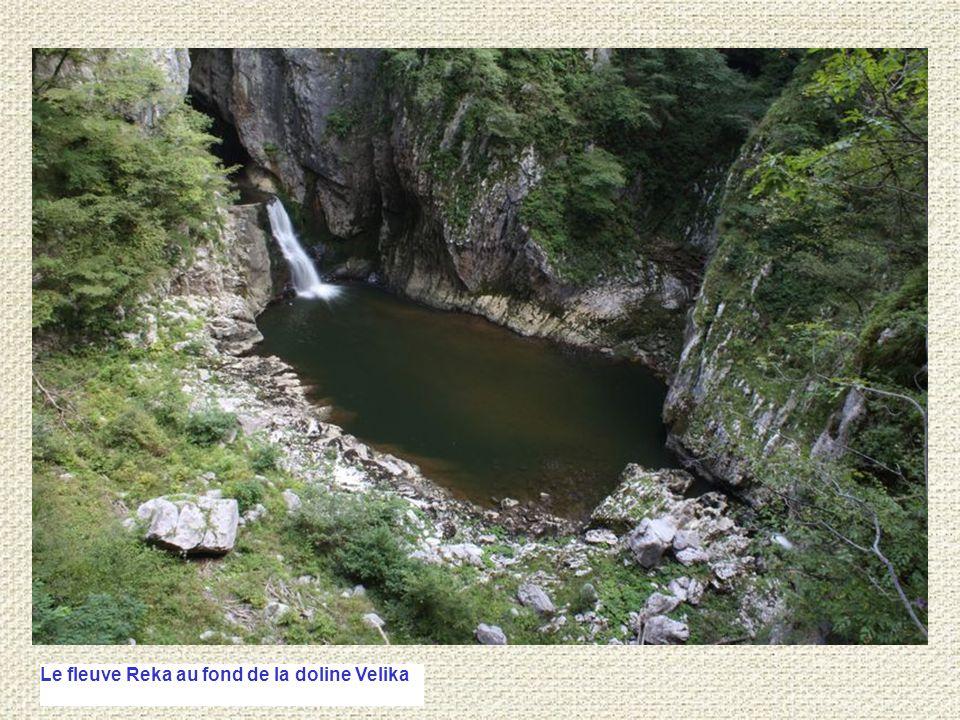 Le fleuve Reka au fond de la doline Velika