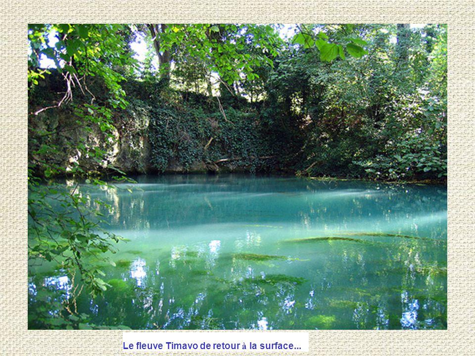 Le fleuve Timavo de retour à la surface...