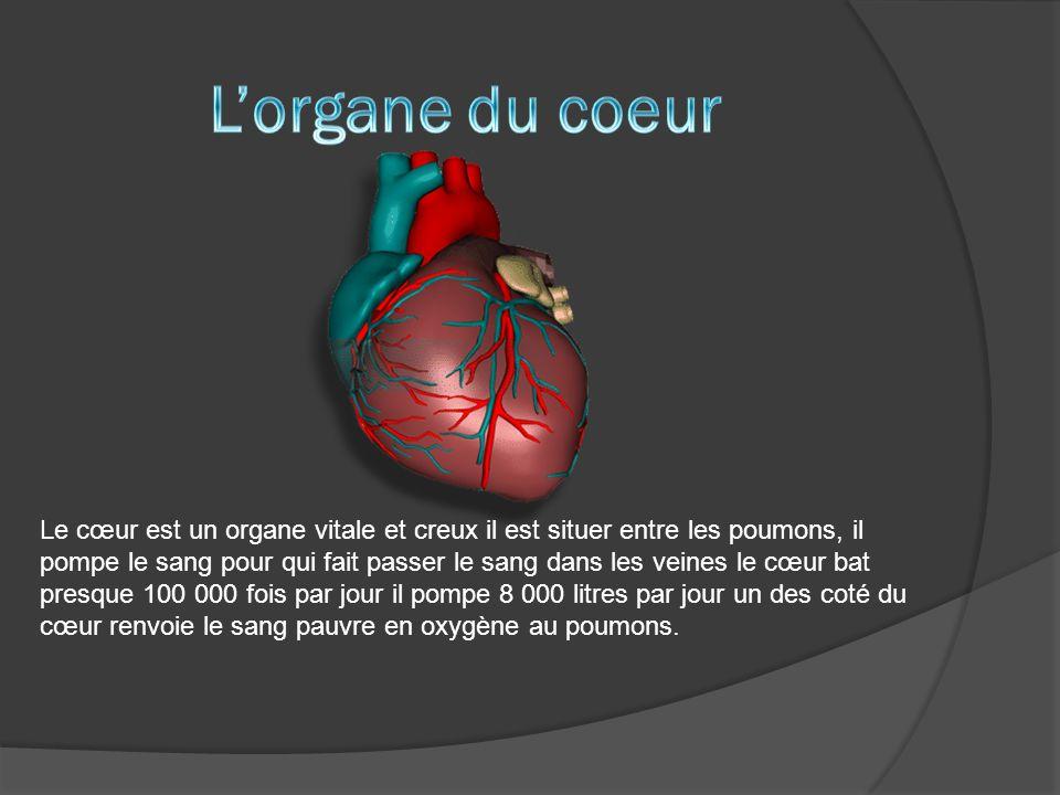 L'organe du coeur