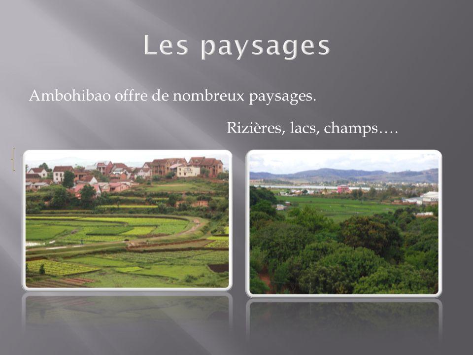 Les paysages Ambohibao offre de nombreux paysages.