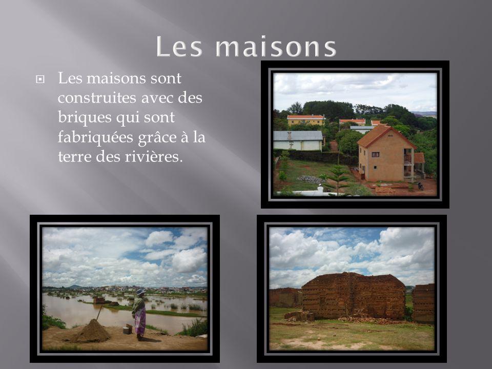 Les maisons Les maisons sont construites avec des briques qui sont fabriquées grâce à la terre des rivières.