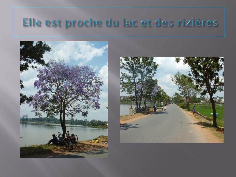 Elle est proche du lac et des rizières