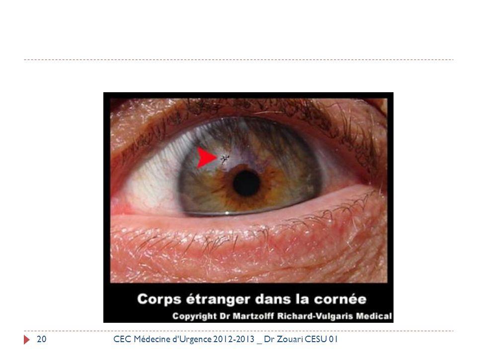 CEC Médecine d Urgence 2012-2013 _ Dr Zouari CESU 01