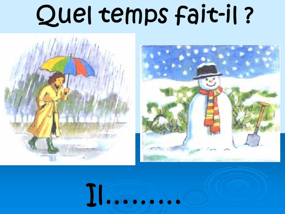 Quel temps fait-il Il………