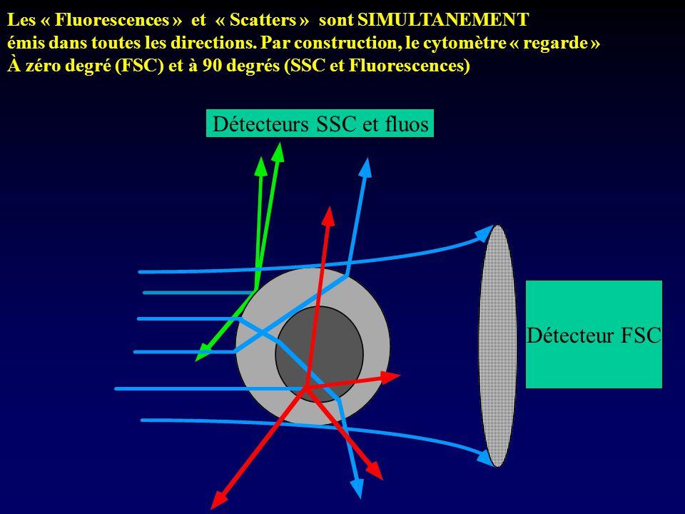 Détecteurs SSC et fluos