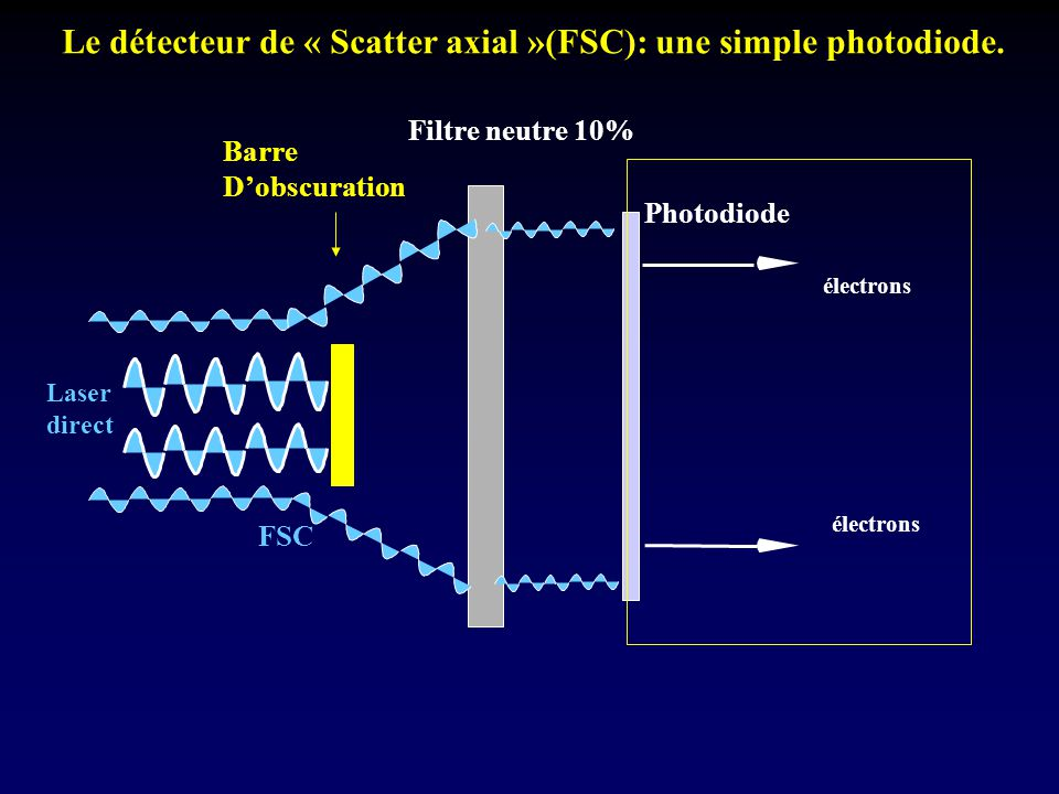 Le détecteur de « Scatter axial »(FSC): une simple photodiode.