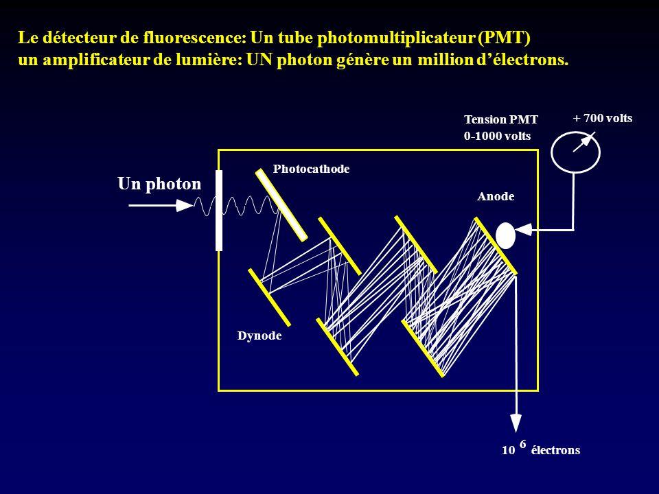 Le détecteur de fluorescence: Un tube photomultiplicateur (PMT)