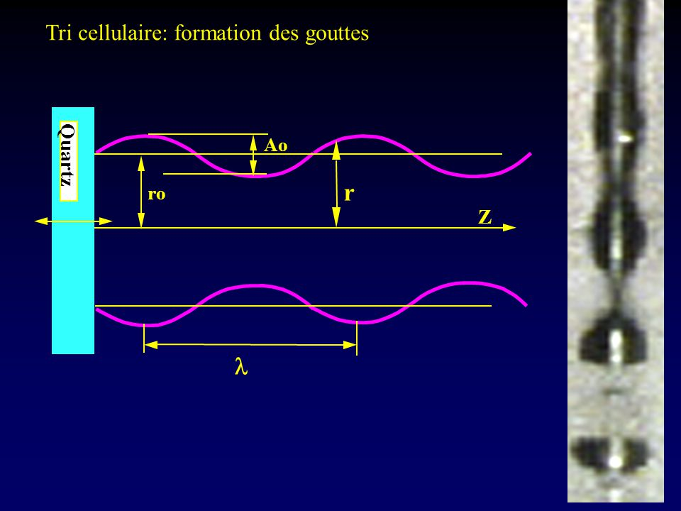 Tri cellulaire: formation des gouttes