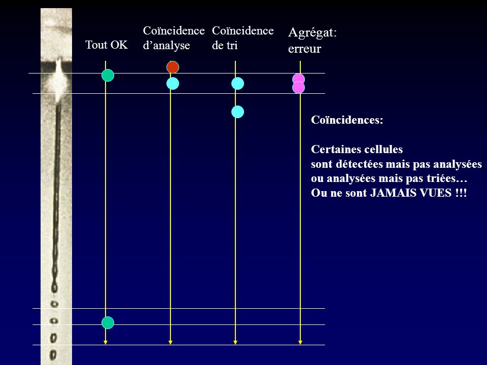 Agrégat: erreur Coïncidence d'analyse Coïncidence de tri Tout OK
