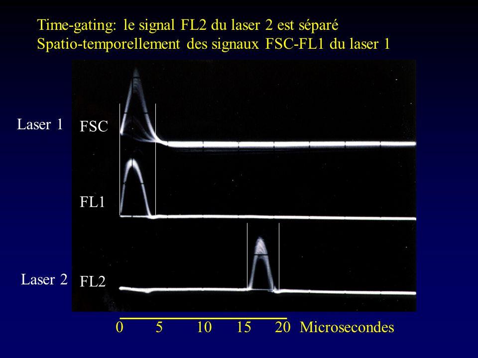 Time-gating: le signal FL2 du laser 2 est séparé