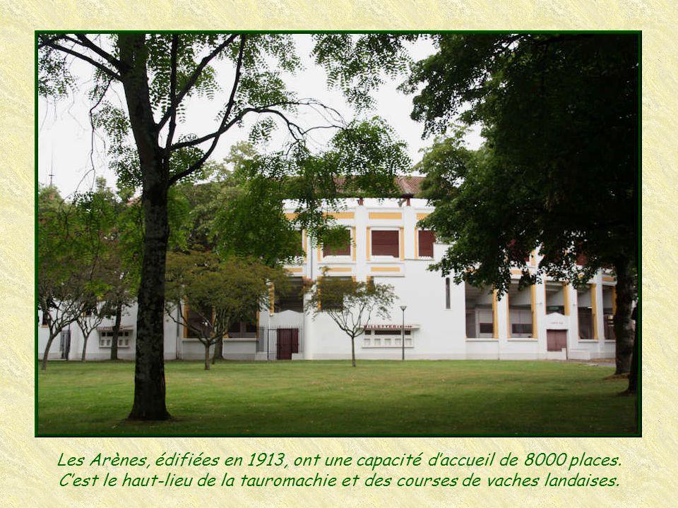 Les Arènes, édifiées en 1913, ont une capacité d'accueil de 8000 places.