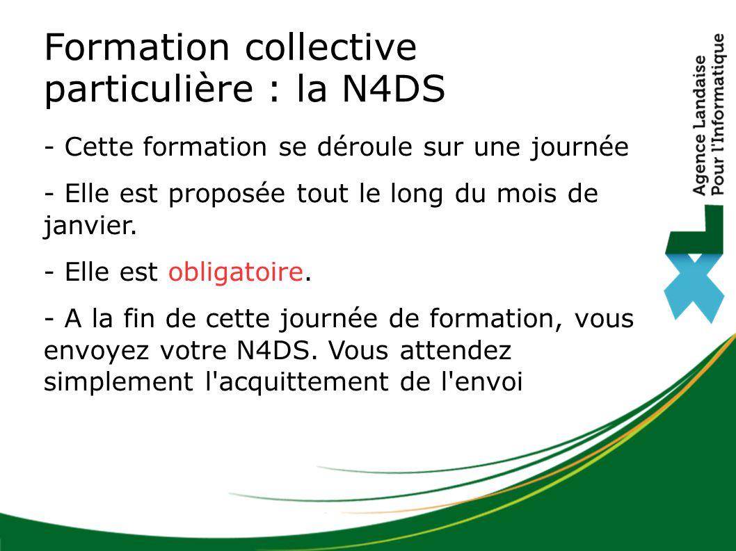 Formation collective particulière : la N4DS