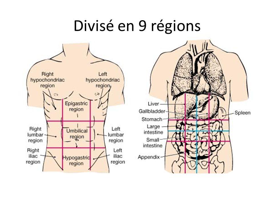 Divisé en 9 régions