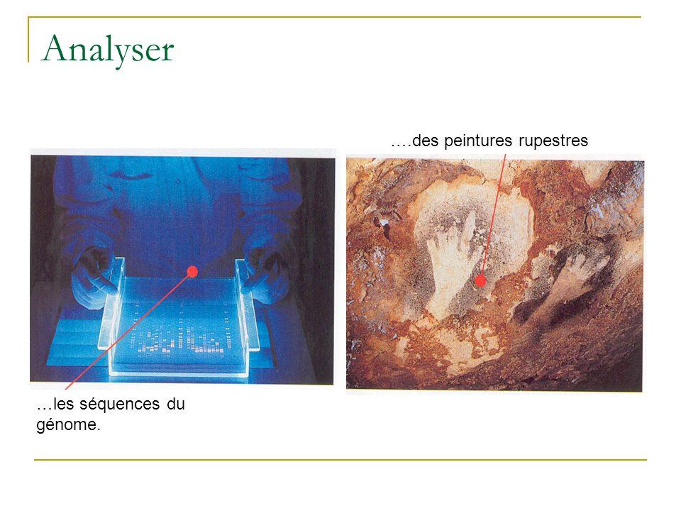 Analyser ….des peintures rupestres …les séquences du génome.