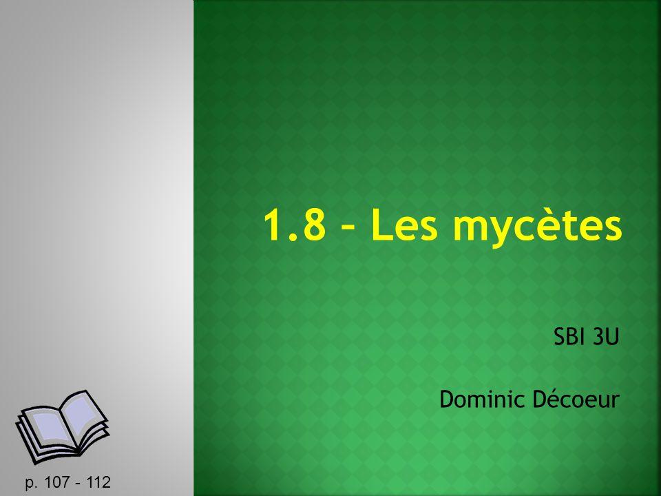 1.8 – Les mycètes SBI 3U Dominic Décoeur p. 107 - 112