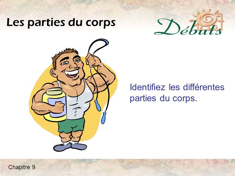 Les parties du corps Identifiez les différentes parties du corps.