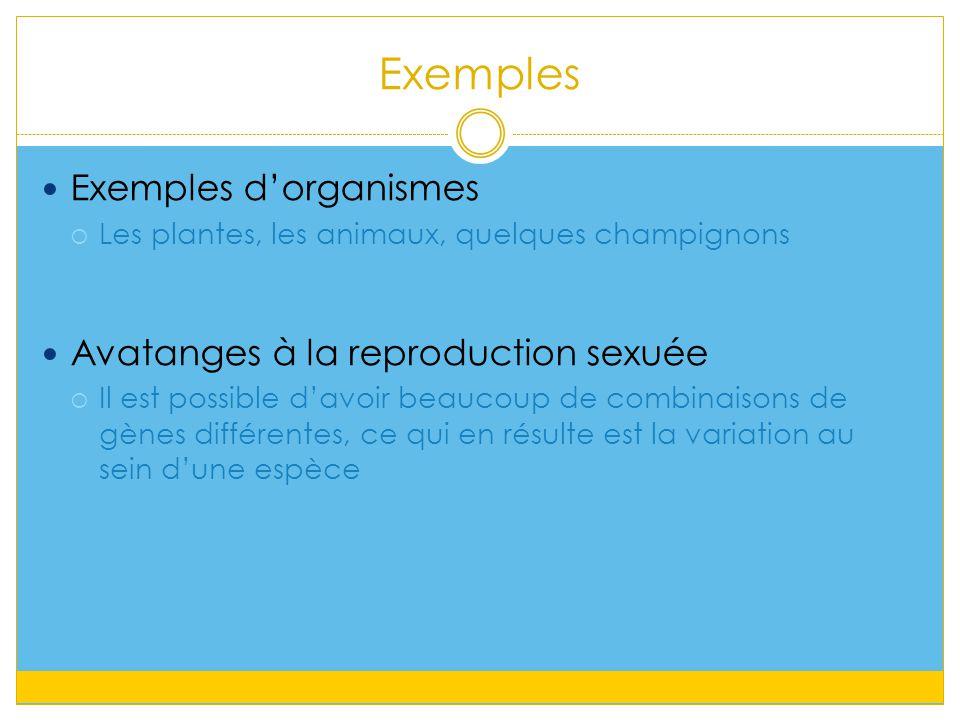 Exemples Exemples d'organismes Avatanges à la reproduction sexuée
