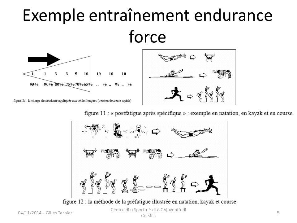 Exemple entraînement endurance force